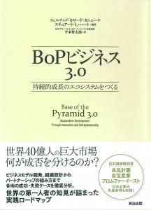 BoPビジネス3.0